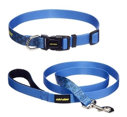 SkiDoo Dog Leash and Collar (large dogs)