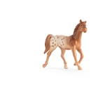 Appaloosa - Collect 'N Play