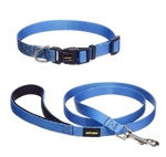 SkiDoo Dog Leash and Collar (medium dogs)